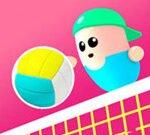 Volley Bønner